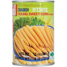Epis de maïs jeune Image
